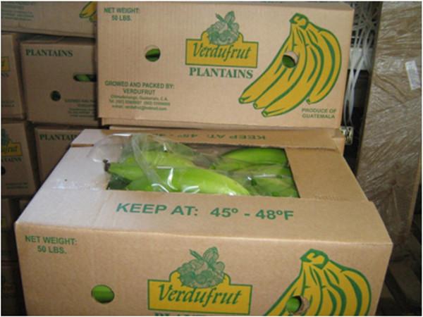 :: Verdufrut » Plátano Verde